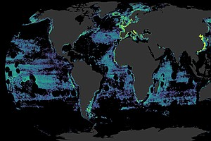 New Maps Reveal Global Fishing's 'Vast Scope Of Exploitat...