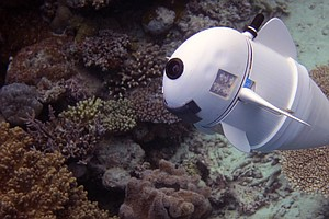 WATCH: Robotic Fish Moves Like The Real Thing — So It Can Observe The Real Thing