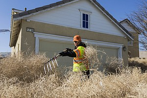 'Houses Disappeared' When Tumbleweeds Rolled Into This Ca...