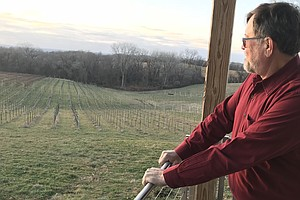 Midwestern Vintner Saves The Forgotten Grapes That Saved ...
