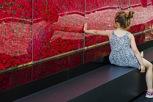 A Wall of Poppies Honors Fallen Soldiers On The National ...