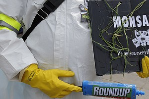 Monsanto No More: Agri-Chemical Giant's Name Dropped In B...