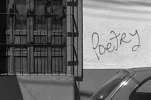 Poetry Is Making A Big Comeback In The U.S., Survey Resul...