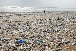 An Indian State Bans Plastic Bags, Straws And More. Will ...