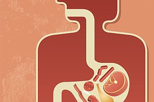 Diet Hit A Snag? Your Gut Bacteria May Be Partly To Blame