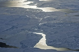 Some Of The Oldest Ice In The Arctic Is Now Breaking Apart