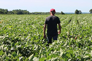 Agriculture Department Will Pay $4.7 Billion To Farmers H...