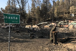 Will More Logging Save Western Forests From Wildfires?