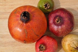 Biologist Wants Americans To Taste A Rainbow Of Pomegranates