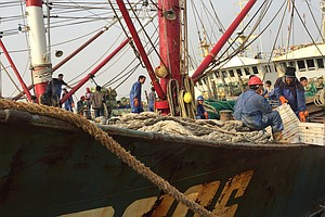 Could A Ban On Fishing In International Waters Become A R...