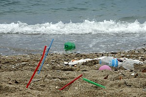 European Parliament Approves Ban On Some Single-Use Plast...