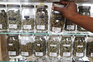 Voters Relax Marijuana Laws In 3 More States: Michigan, U...