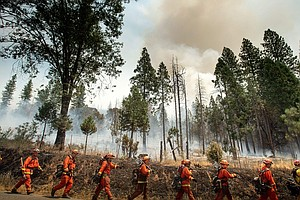 Serving Time, And Fighting California Wildfires For $2 A Day