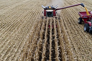 Farm Bill Compromise Reached With SNAP Changes Out, Indus...