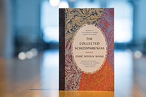 'The Collected Schizophrenias' Conveys What It's Like To Live With A 'Hidden'...