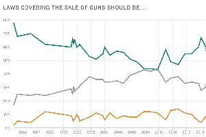 Poll: A Year After Parkland, Urgency For New Gun Restrict...