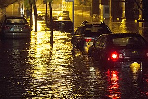 New York City Admits Defrauding FEMA Out Of Millions Afte...