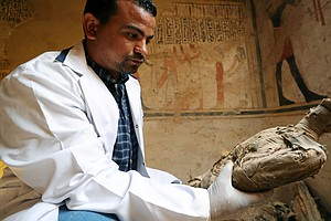 Mummified Mice And Falcons Found In Newly Unveiled Egypti...