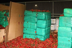Spicy With A Twist: Nearly 4 Tons Of Pot Found In Jalapen...