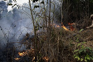 Brazil Rejects G-7's Offer Of $22 Million To Fight Amazon Fires
