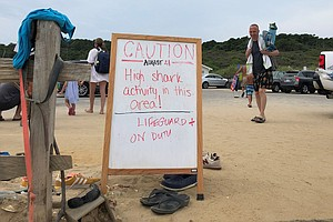 Sand, Sunscreen And ... Sharks! Cape Cod Beach Towns Do More To Keep People Safe
