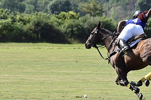 Philly Teens 'Work To Ride' And Change The Face Of Polo