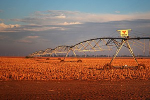 Irrigation For Farming Could Leave Many Of The World's Streams And Rivers Dry