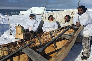 No Bowhead Sightings Yet For Alaskan Whalers. Some Blame Climate Change