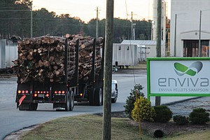 Europe Is Burning U.S. Wood As Climate-Friendly Fuel, But Green Groups Protest