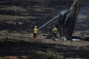 Officials In Australia's New South Wales Celebrate: 'All Fires Are Now Contai...