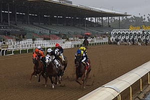 Another Horse Dies At Santa Anita Race Track, The 11th Since Late December