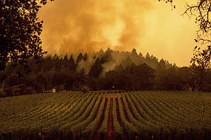 California Fires: 3 More People Killed As Blazes Rage In Wine Country