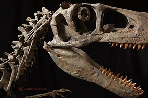 Utah Considers State Park Named For Utahraptor Dinosaur