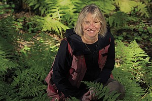 Trees Talk To Each Other. 'Mother Tree' Ecologist Hears Lessons For People, Too