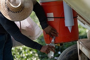 Outdoor Workers Could Face Far More Dangerous Heat By 2065 Because Of Climate...