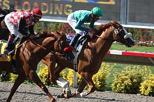 Photo for Del Mar Cancels Weekend Racing Due To COVID-19 Among Jockeys