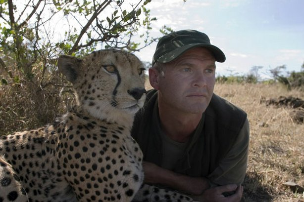 When the mother of two cheetah cubs is killed, a veteran filmmaker becomes their new parent. Pictured: Toki and Simon King.