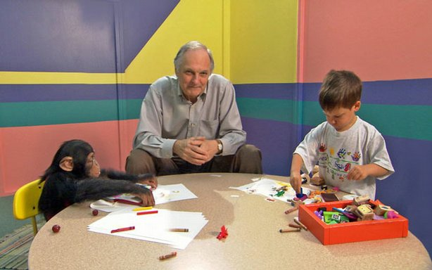 Alan Alda sits at a table with a young boy and chimpanzee. Alda hosts and nar...