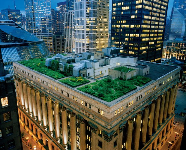 A garland of nature crowns Chicago's City Hall, softening the hard edges of a...