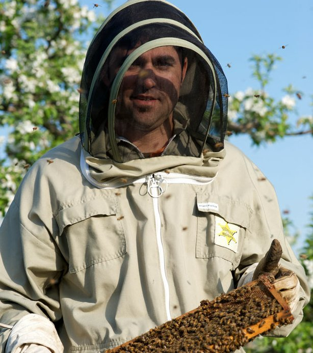 Chef David Guas helping the bees pollinate apples at Lerew Farms.