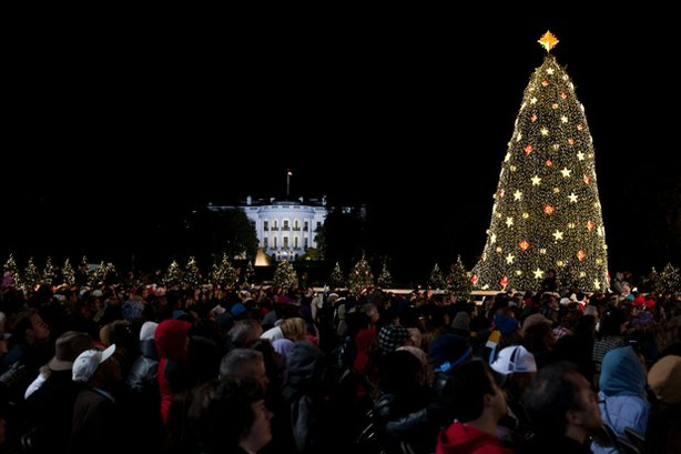 Christmas tree at the White House