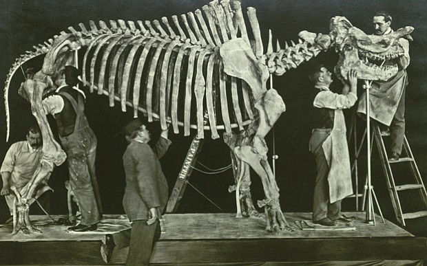 Promotional image of a dinosaur skeleton being mounted on display.
