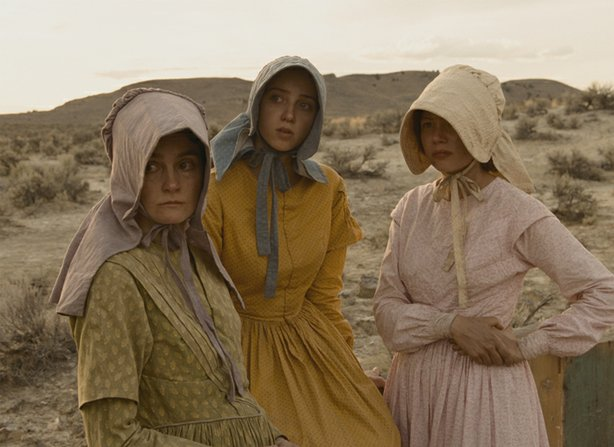 Shirley Henderson, Zoe Kazan, and Michelle Williams are three women traveling...
