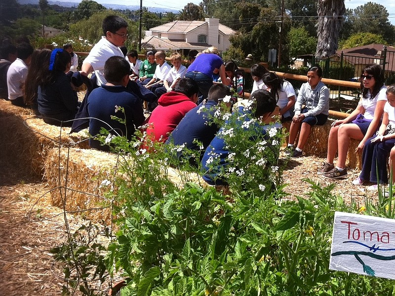 Students learn about gardening at Olivewood Gardens and Learning Center in Na...