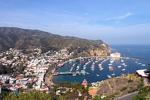 Photo for Huge DDT Dumping Ground Found Near Catalina