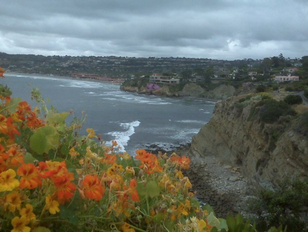 Coast Walk, La Jolla