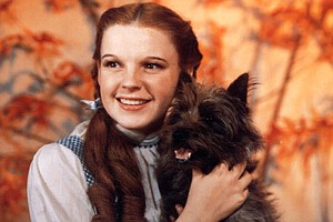 'Finding Dorothy' Pulls Back The Curtain On 'The Wizard o...
