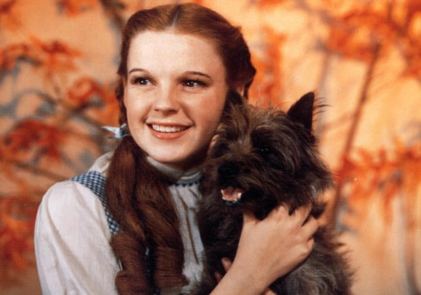 "Judy Garland as Dorothy Gale poses with Terry, the female Cairn terrier who appeared with her as Toto in Metro-Goldwyn-Mayer's 1939 classic, ""The Wizard of Oz."""