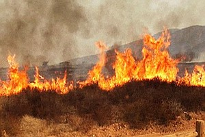 Brush Fire Near Campo Burns 1,000 Acres, Destroys Structures