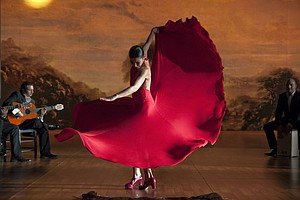 Review: 'Flamenco, Flamenco'